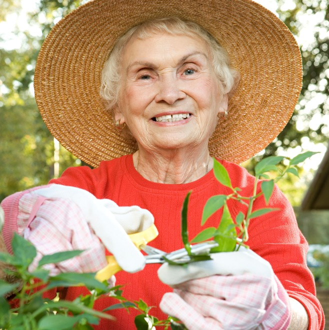 Happy senior woman cutting back a plant wearing a big sun hat